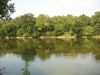The Shenandoah River